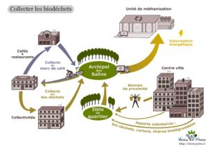 La chaine de traitement des biodéchets, Illustration Terra Petra