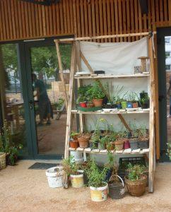 Archipel des Salins / étagère à plantes/ E. D'Aversa