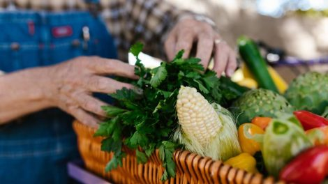 Légumes bio / photo Rodnae productions- Pexels